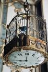 Time Flies Birdcage Clock