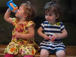 Toddler Talk Web Episode 6