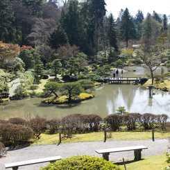 Seattle Arboretum Japanese Gardens