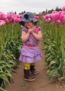 Tulip Festival Szaba