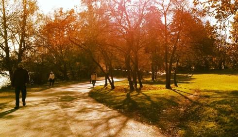 Green Lake Autumn Walk Shadows