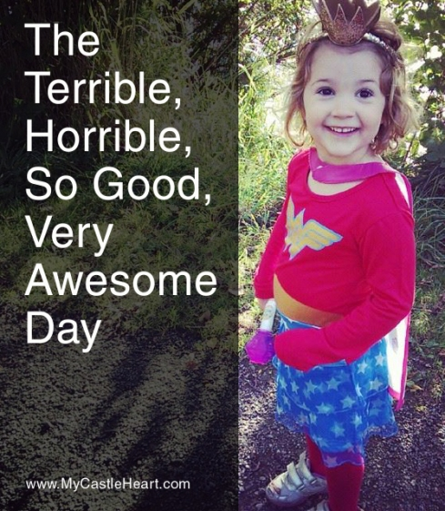 The Terrible Horrible So Good Very Awesome Day